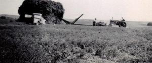 1944 (2)